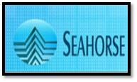 Sea Horse Shipping Agencies P Ltd